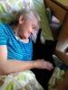 Felinoterapie, canisterapie_10