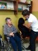 Felinoterapie, canisterapie