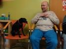 Felinoterapie. canisterapie_3