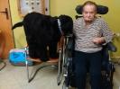Felinoterapie, canisterapie_5