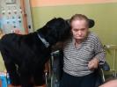 Felinoterapie, canisterapie_7