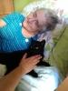 Felinoterapie, canisterapie_9