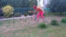 Zahradní párty_11